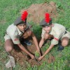 Afforestation through schools